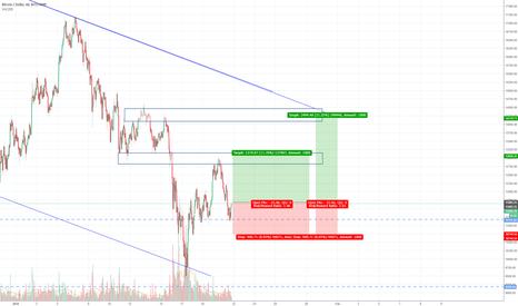 BTCUSD: Bitcoin Hourly Trade