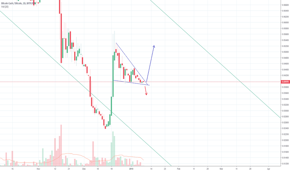 BCHBTC: BCHBTC Bull Descending Triangle 1D