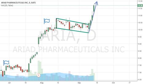ARIA: Aria Bull Flag Updated