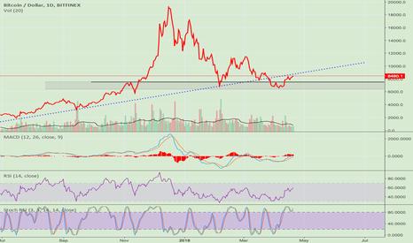BTCUSD: BTC Under the bull trend line