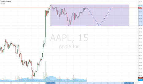 AAPL: Apple Channel Possible