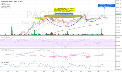 PAGEIND: Page Inds - C&H breakout
