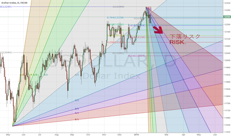 USDOLLAR: Details of USDOLLAR's risk.