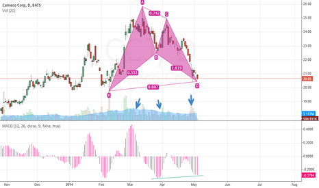 CCJ: Bat Pattern Long on CCJ