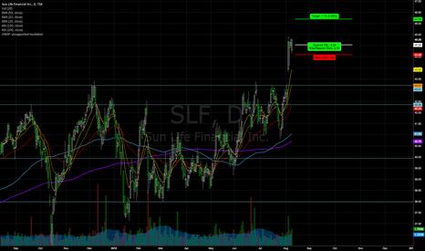 SLF: SNF LONG