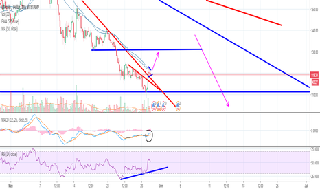 LTCUSD: LTC Bull flag forming? the play