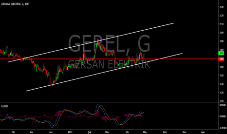 GEREL: GEREL DAİLY