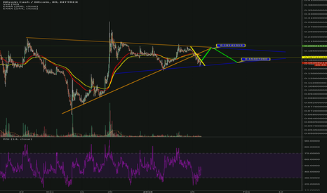 BCCBTC: Double Triangle Pennant