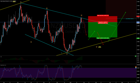 NZDUSD: possible break or one more move down??