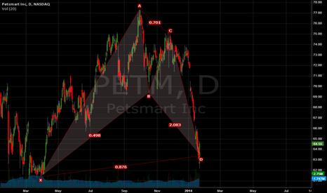 PETM: PETM- Bat Pattern In Progress