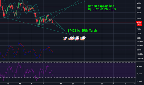 BTCUSD: $7403 by 19th March