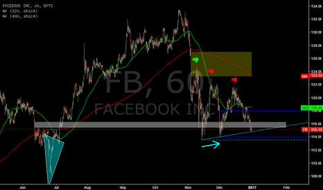 FB: FB @ 1h @ will gap around 116 hold (after juli`16 reversal) ?
