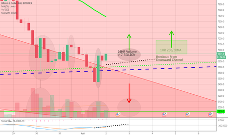 BTCUSD: Bitcoin BTC - Fate Decided In 24HRS