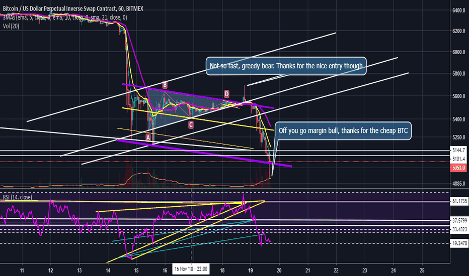 XBTUSD: Story of A Whale (How To Amateur Retail Bulls and Bears)