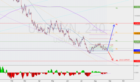 USDMXN: USDMXN bearish impulse  exhausted