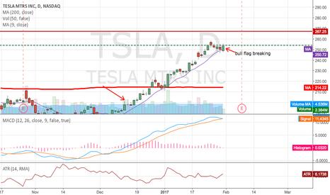 TSLA: TSLA Buy