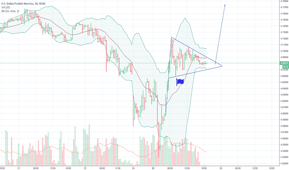 USDTRY: USDTRY pennant formation and target price