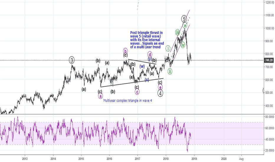 M_M: Elliott Waves - Wave 4 / 5 multi year trend