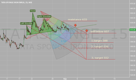 TATASPONGE: Head & Shoulders