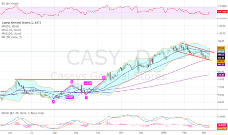 CASY: Testing top of bull flag