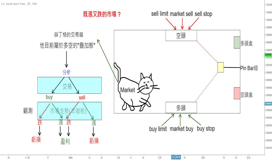 USDCHF: 交易中的「類科學」--薛丁格的交易貓(Featuring. LoisYang)