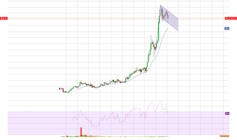 PEL: Monthly Chart PEL