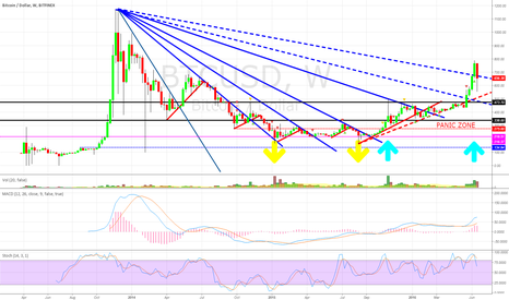 "BTCUSD: BTC WEEKLY CHART: ""The Panic Zone""  Black Swans Landing"