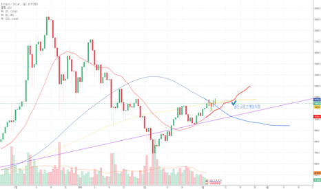 BTCUSD: BTC/USD 추세및 예측 시험용