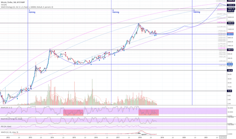 BTCUSD: BTCUSD (1W) LOG: Why is it right to buy and hold Bitcoins?