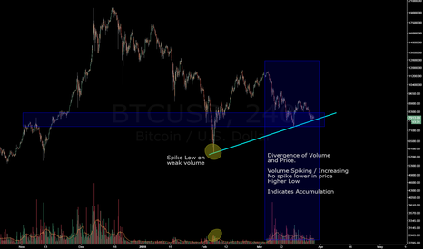 BTCUSD: Looking like a bottom - High Volume but a higher low?