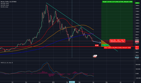 BTCUSD: The Opportunity Trough of Bitcoin