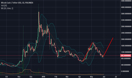 BCHUSDT: BitcoinCash 2000$ to July?