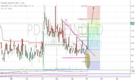 PDUMJEIND: PUDUMJEE INDUSTRIES LTD- Huge breakout with huge volumes.