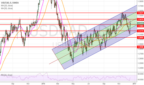 USDCAD: usdcad daily where we are ?