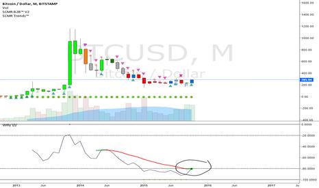 BTCUSD: The Bubble Begins