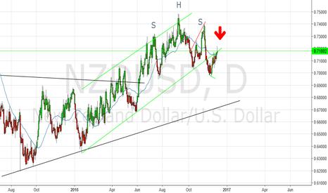 NZDUSD: NZD/USD short! Daily time frame.