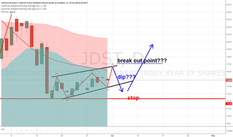 JDST: Miners going bearish???