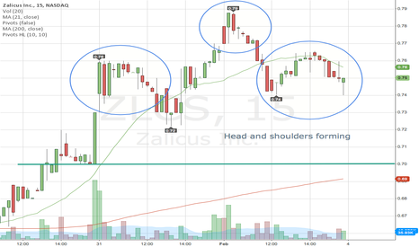 ZLCS: ZLCS Head and Shoulders suggests short term fall