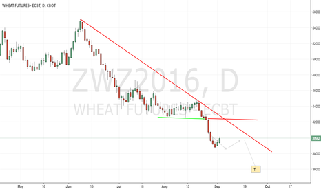 ZWZ2016: CBoT Wheat still waiting for the bottom to form