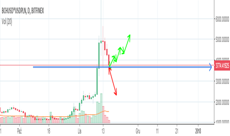 BCHUSD*USDPLN: Bitcoin CASH pump and down czy korekta i ponowne wzrosty ?