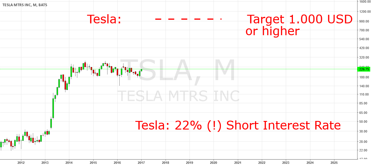 Tesla Will Rise At Least To 1.000 USD