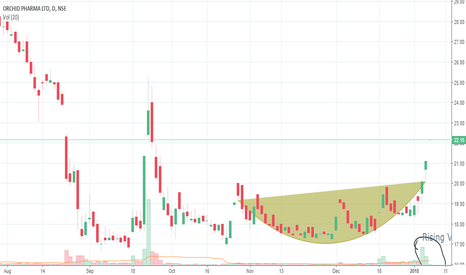 ORCHIDPHAR: ORCHID PHARMA long term bullish