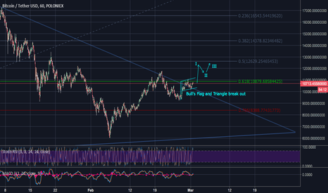 BTCUSDT: BTCUSD the chart and indicators are very optimistic