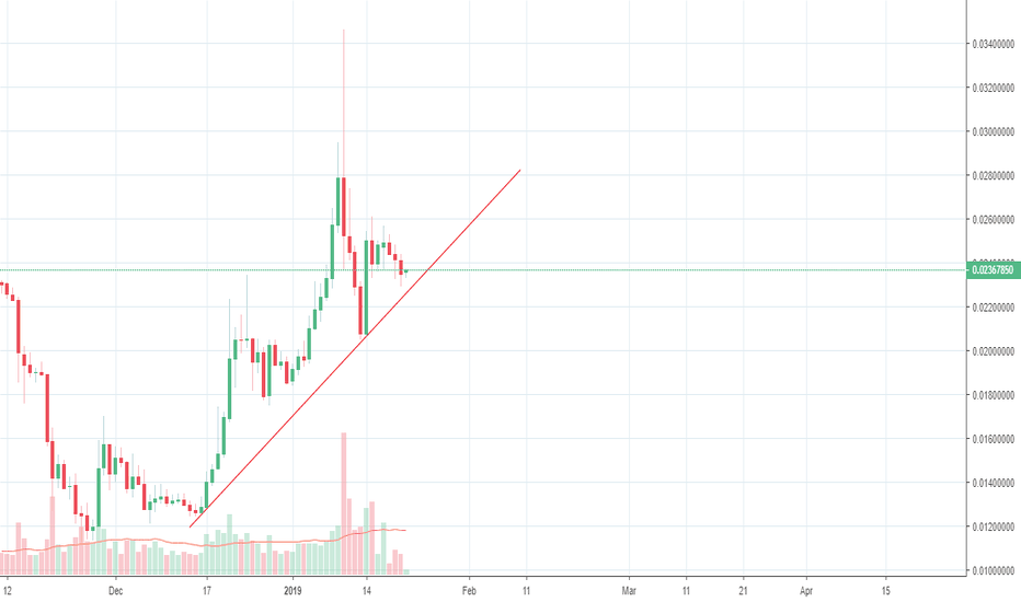 TRXUSDT: TRX found a new support and is going between 0.031 and 0.036