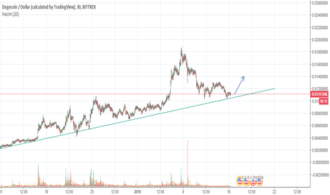 DOGEUSD: Support line