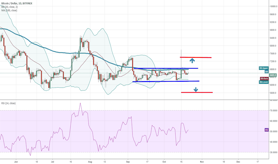 BTCUSD: 600$ Canal,Otherwise it's a Gamble