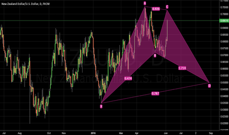 NZDUSD: NZDUSD: Potential Gartley Pattern (Dual opportunities)