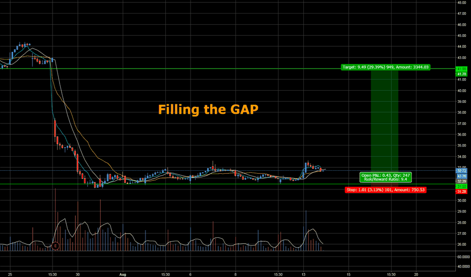 TWTR: TWITTER Filling the Gap