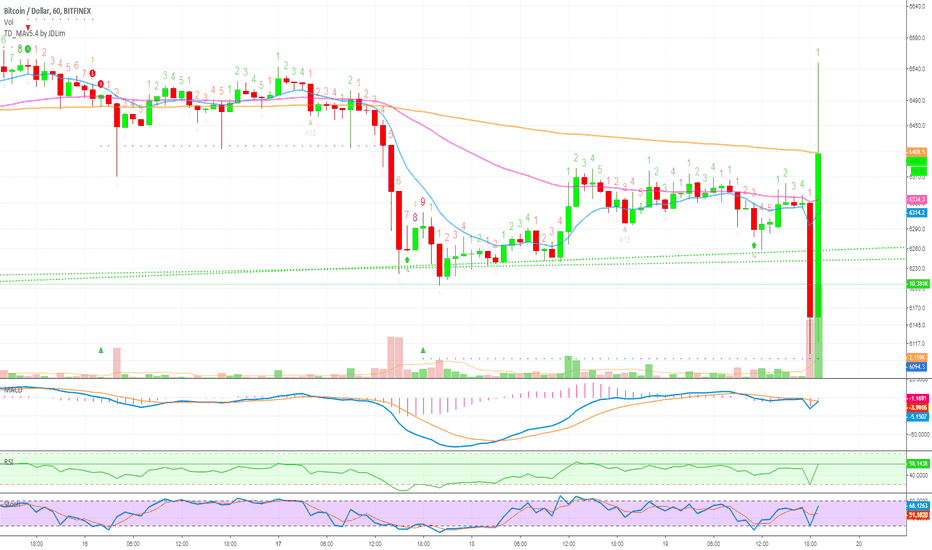 BTCUSD: Bitcoin Explodes on the Hourly Candle...