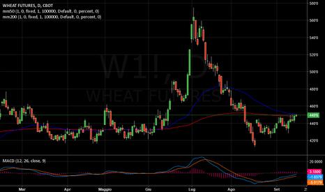 W1!: WHEAT   -   In cauta ripresa